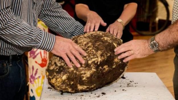 archeologie boz boter